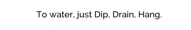 wordpress home page text box dip drain hang